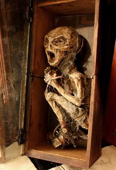A home in London that used to be an orphanage uncovered something very interesting….and extremely disturbing in 2006. They found over 5,000 skeletons in the basement! They're definitely not the type of skeletons you're thinking of though. You have to see these things to believe them….and even then you might not believe them.