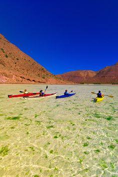 Sea kayaking in El Cardonal Bay, Isla Espiritu Santo, Sea of Cortes, Baja California Sur, Mexico. By Blaine Harrington Photography.