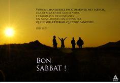 Bon Sabbat, Sabbats, Signs, Books, Movie Posters, Scriptures, God, Quote, Libros