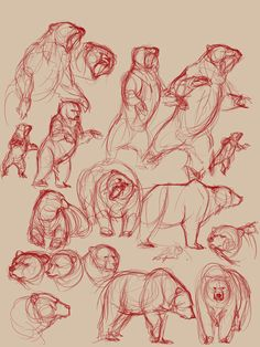 Drawing Animal Art References — lulustudies: Bears bears bears and more bears - Animal Sketches, Animal Drawings, Drawing Sketches, Art Drawings, Bear Sketch, Bear Drawing, Bear Art, Art Studies, Furry Art