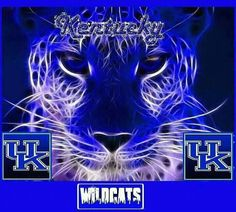 Love UK Basketball.. GO CATS!!!!!
