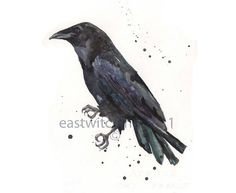 RAVEN Watercolor Print 8x10 inches  The Pose by eastwitching, $20.00