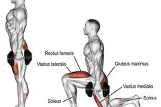 Dumbbell rear lunge exercise