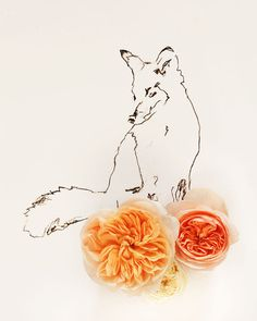No. 9891 fox and flower by kari herer photography