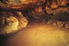 Altamira Cave | Altamira cave, Cantabria