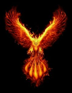 phoenix bird with burning effect Phoenix Artwork, Phoenix Wallpaper, Phoenix Images, Phoenix Drawing, Phoenix Bird Tattoos, Phoenix Tattoo Design, Phoenix Wings, Foto Fantasy, Dark Fantasy Art
