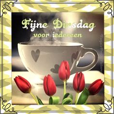 Dinsdag Jelsa, Serving Bowls, Good Morning, Qoutes, Mugs, Day, Tableware, Bom Dia, Buen Dia