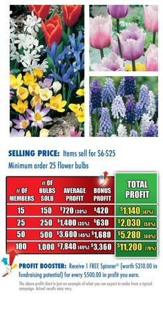 Flower Bulb Fundraising is one of the best school fundraisers. Get FREE Order-Taking Flyers at http://www.abcfundraising.com/fundraising/school-fundraiser.htm