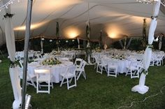 Vines are used to bring the garden into the marquee.