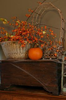 bittersweet - can we grow it in Manitoba? I would love to have some for fall decor. Autumn Day, Autumn Home, Autumn Leaves, Hello Autumn, Mabon, Primitive Fall, Autumn Decorating, Decorating Ideas, Happy Fall Y'all