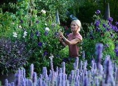 """4,635 gilla-markeringar, 71 kommentarer - Victoria Skoglund (@victoriaskoglund) på Instagram: """"En trädgårdsprinsessa i en vild luktärtsäng! Jag älskar luktärtor och då menar jag Älskar❤️ Bilden…"""""""
