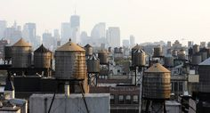 Jeff knows all about these, water towers on rooftops all over NYC