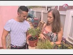 ▶ Iluminame/Globo Portugal-Querido Mudei a Casa - YouTube