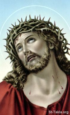 www-St-Takla-org--Jesus-Crown-of-Thorns-15.jpg (324×535)