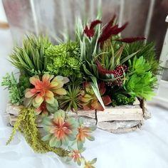 Świąteczne Atelier - Sukulenty w drewnianej skrzynce 2 nr. 219 Plants, Atelier, Plant, Planets