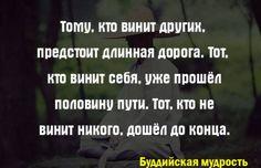 15421030_1236851799708360_5955279583298836591_n.jpg (604×391)