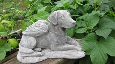 This solid concrete Labrador retriever Angel statue is 11 long at the base 6 tall and 6.5 wide. Makes a GREAT memorial for your beloved pet, or