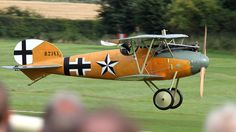 Albatros DVa [replica] - the brown section of the plain, is the natural wood of the plane, which would just have a few coats of laquer on it.