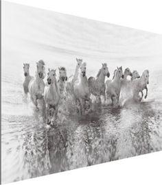 Alu Dibond Bild - Weiße Pferde im Meer - Quer 2:3 50x75-22.00-PP-ADB-WH Jetzt bestellen unter: https://moebel.ladendirekt.de/dekoration/bilder-und-rahmen/bilder/?uid=b1c5745f-edda-509a-b306-f7a1113ad185&utm_source=pinterest&utm_medium=pin&utm_campaign=boards #heim #bilder #rahmen #dekoration