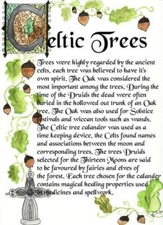 """""""Trees were highly regarded by the ancient Celts. Each tree was believed to have its own spirit."""" Little side note. JK Rowling made the main Harry Potter characters' wands out of the Celtic trees for their birth months. Celtic Tree, Irish Celtic, Celtic Heart, Celtic Dragon, Culture Art, Josephine Wall, Celtic Symbols, Celtic Paganism, Celtic Knots"""
