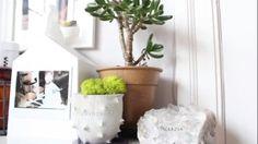 Imjennim room Jenn Im, Modern Minimalist, House Tours, Planter Pots, Sweet Home, Interior Design, Room, Inspiration, Home Decor