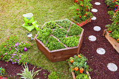 Build this hexagon planter box for an attractive and unique way to grow flowering plants or herbs on your deck or in your backyard.
