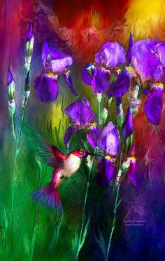 "Art by Carol Cavalaris   Jewels Of Summer "" by Carol Cavalaris   Redbubble"