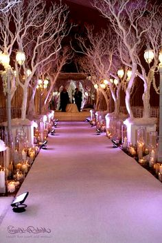 Winter Wonderland Wedding Decorations: I would love to have these trees at my wedding, why cherry blossom wedding why! my-vintage-pink-wedding Tree Wedding, Christmas Wedding, Our Wedding, Wedding Flowers, Wedding Colors, Branches Wedding, Church Wedding, Christmas Trees, Ballroom Wedding