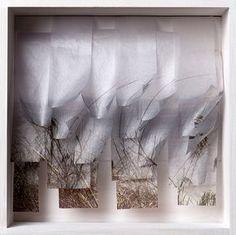 Katherine D. Crone, Blades of Grass, Wood, Usuyou Gampish, nylon monofilament Digitally altered photograph, inkjet printed, bookbinding stitched http://www.katherinedcrone.com/