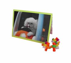 Miniature Toy Poodle Card Poodle Greeting Card by Lillyzcardz, $4.00