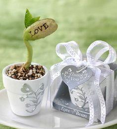 """""""Love Grows On"""" Magic Bean    R 26.00"""