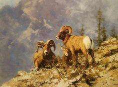 Sheep Paintings, Wildlife Paintings, Wildlife Art, Wild Life, Art Techniques, Pet Birds, Warriors, Sculptures, David
