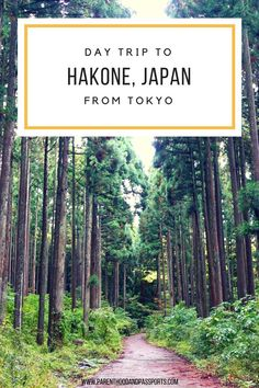 Relaxing hot springs, peaceful hikes, and ideal views of Mount Fuji. Why a day trip to Hakone, Japan is worth the two hour train ride from Tokyo. #hakone #japan