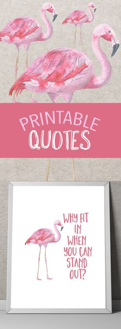 Printable quote art Printable art Printable wall art Printable invitations Printable art prints Printable art watercolor Printable quotes - Doodles/Drawings/Sketches - Pictures on Wall ideas Pink Flamingo Party, Flamingo Decor, Flamingo Birthday, Pink Flamingos, Flamingo Bathroom, Printable Quotes, Printable Invitations, Printable Wall Art, Party Invitations