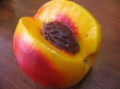 sabundan meyve yapımı ile ilgili görsel sonucu