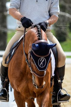 Warm up ring Rolex 2014 Fine Point Photography