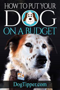 dog-budget-cover-300