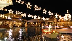 Stardust Fantasia at Kanucha Resort – Okinawa Hai Backpacking Asia, Okinawa Japan, Japan Travel, November 1st, Big Move, The Incredibles, Activities, Swans, Palm Trees