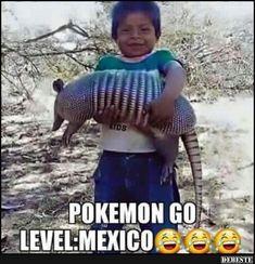 Pokemon GO.. Level Mexico. | Lustige Bilder, Sprüche, Witze, echt lustig