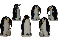 Dedales de pinguinos!!