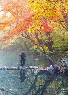 Landscape Photos, South Korea, Mountains, Places, Nature, Painting, Travel, Autumn, Orange