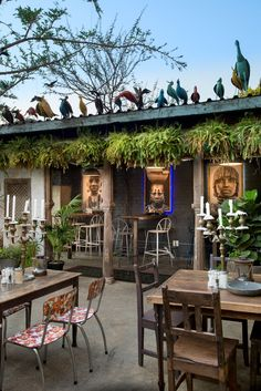 Portraits of people of the Omo River Valley in Ethiopia by acclaimed South African photographer David Ballam are displayed in Milk Bar. The colourful birds on the rooftop are made in the Amatuli workshop.