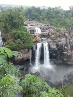 Would love to visit  Chapada dos Guimarães National Park or Xingu National Park in Mato Grosso