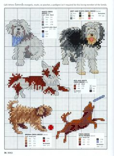 Gallery.ru / Фото #34 - Picture Your Pet in Cross Stitch - patrizia61 Cross breeds.
