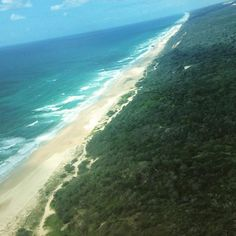 Lizzy F took to the skies above Fraser for an optional joy flight with beach takeoff and landing  Cool Dingo guided 2 and 3-day tours of Fraser Island #cooldingo #fraserisland #queensland #australia
