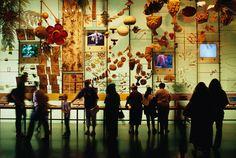 El hall de la biodiversidad en el Museo de Historia Natural