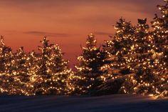 Χριστούγεννα... η γιορτή που παρασέρνει, μικρούς και μεγάλους.