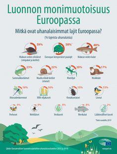 Miljoona lajia maailman kaikkiaan kahdeksasta miljoonasta on uhanalaisia. Katso infografiikasta, mitkä eurooppalaiset lajit ovat vaarassa kadota. Infographics, Map, Movies, Movie Posters, Bulgarian, Europe, Films, Infographic, Film Poster