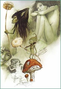 Brian Froud's Faeries and Magical Creatures