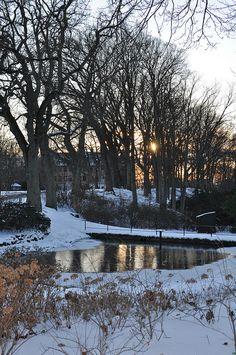Vinter i Sverige / Winter in Sweden, Sofiero Slott och Slottsträdgård